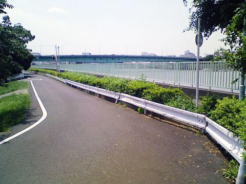 NEC_0485.jpg