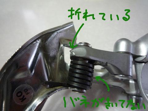 P1030825.jpg